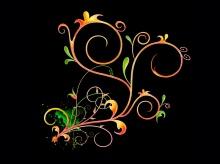 - Blossom in the Dark ( 2 ) -