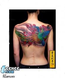 tattoo fullcolor