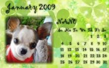 ปฏิทิน หมาน้อยน่ารัก ปี 2552
