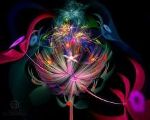 ความงาม+สีสัน  ^__^