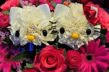 Dog & kitty Flowers ♠