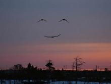 เด็ดกว่าพระจันทร์ยิ้ม