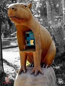 ตู้โทรศัพท์ดีไซน์เก๋