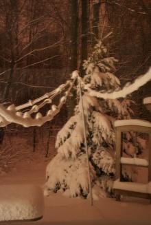 หิมะสวยๆ