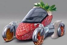 Food On Wheels 1