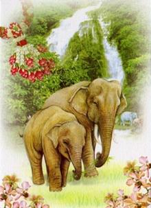 การ์ดปีใหม่จากมูลนิธิเพื่อนช้าง