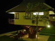 บ้าน ต้นไม้ น่านอน จัง (ใกล้บึงฉวาก สุพรรณบุรี)