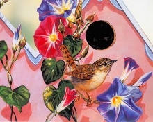 Song Bird Painting.... (นกร้องเพลง)
