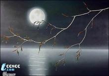 แสงจันทร์กระจ่าง