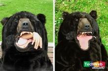 ถุงนอนหมี ... สยองดีเนอะ