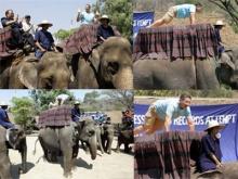 กิจกรรมแบบ ช้าง..ช้าง!?