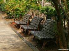 สวน..สวย สไตล์ญี่ปุ่น