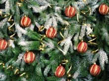 มาตกแต่ง... ต้นคริสต์มาสกันดีกว่า..!!!