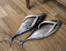 รองเท้าแตะ ไอเดีย แปลกๆ