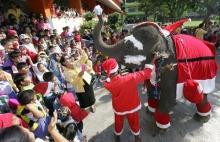 ซานต้า นานาชาติ1