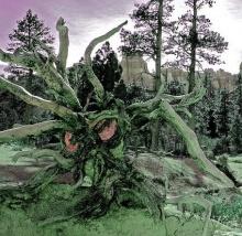 ต้นไม้ปิศาจ..!!