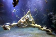 ลีลา..ระบำใต้น้ำ