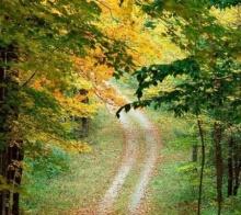 เส้นทางนี้จะนำเราไป ณ ที่ใด