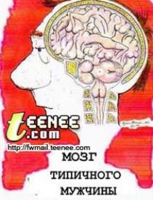 ผู้ชายคิดอะไรบ้างในหัวสมอง