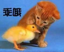 ความรักที่หัวหน้ามีต่อลูกน้อง เป็นแบบนี้ป่าว??????]