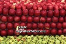 apple mosiac ทำไดไงเนี่ย