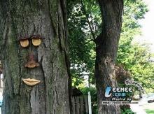 ศิลปะการสลักต้นไม้