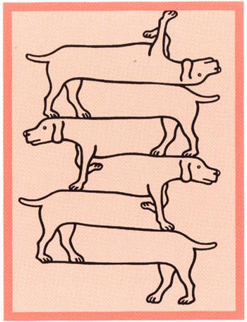 ตกลงว่า  มีน้องหมากี่ตัวกันแน่?