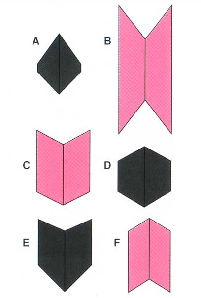 เส้นตรงเส้นในรูปต่อไปนี้ A B C D E F เส้นไหนยาวที่สุด?
